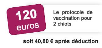120 euros: le protocole de vaccination pour 2 chiots soit 40 euros 80 après déduction
