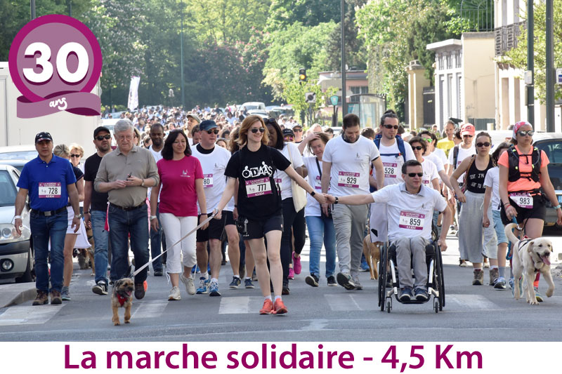 chiens-guides-30ans-marche-001.jpg