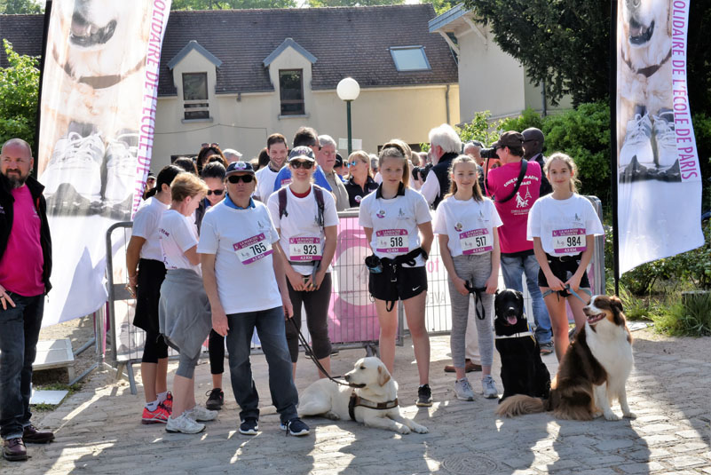 chiens-guides-30ans-marche-008.jpg