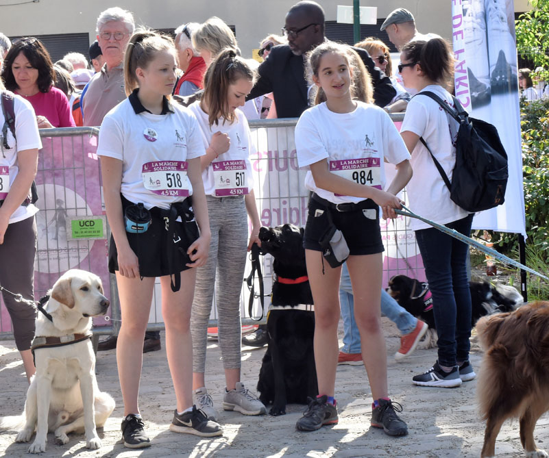 chiens-guides-30ans-marche-009.jpg