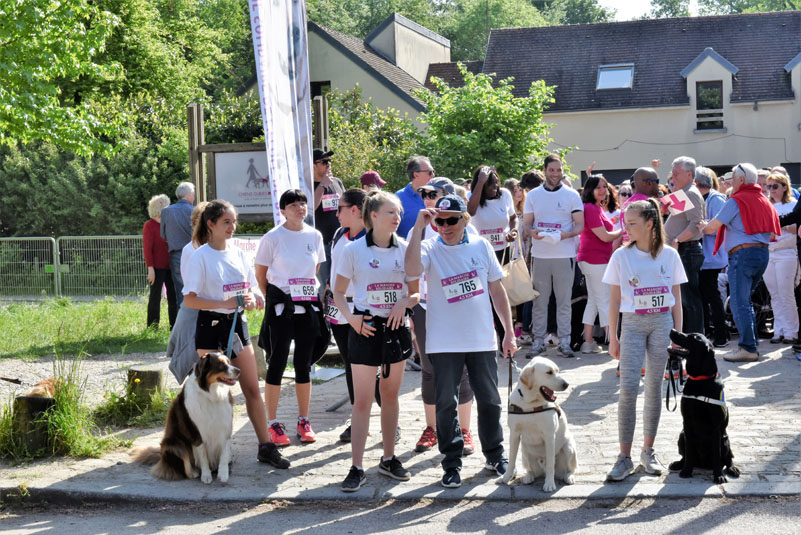 chiens-guides-30ans-marche-010.jpg