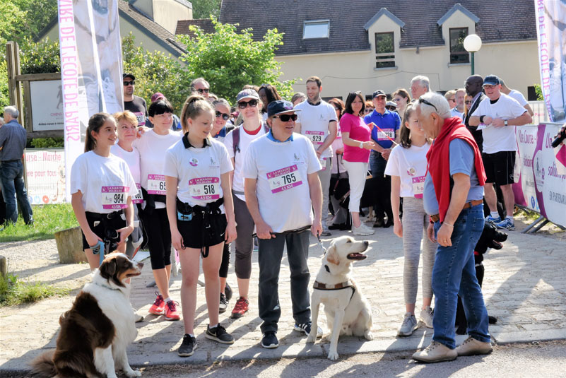chiens-guides-30ans-marche-011.jpg