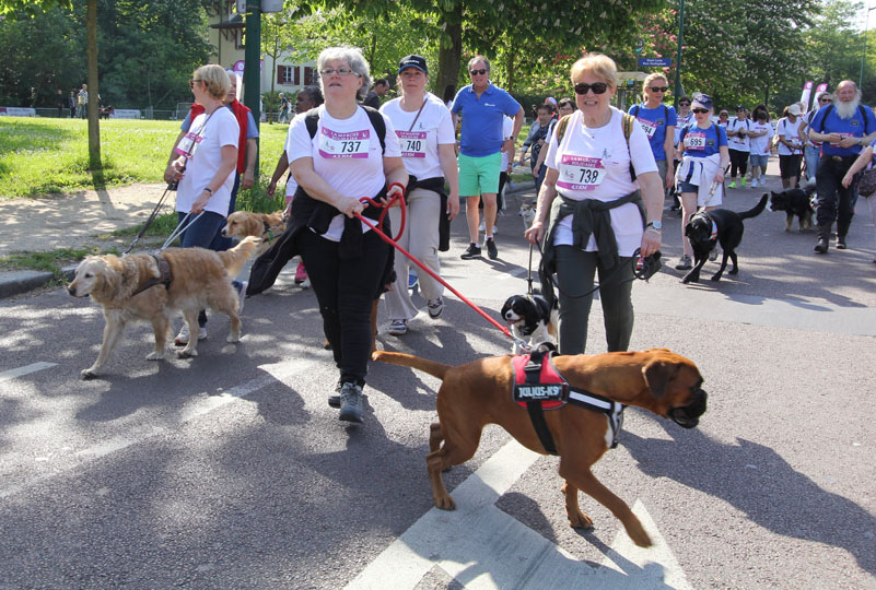 chiens-guides-30ans-marche-037.jpg