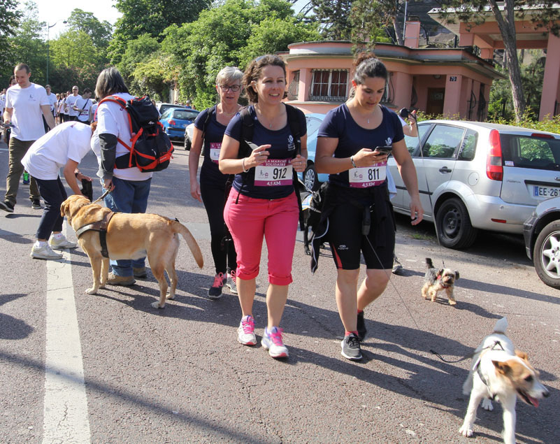 chiens-guides-30ans-marche-043.jpg