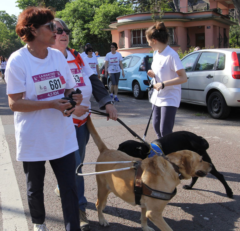 chiens-guides-30ans-marche-046.jpg