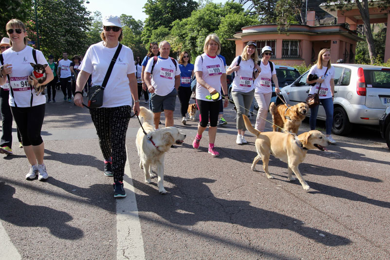 chiens-guides-30ans-marche-048.jpg