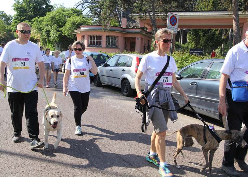chiens-guides-30ans-marche-052.jpg