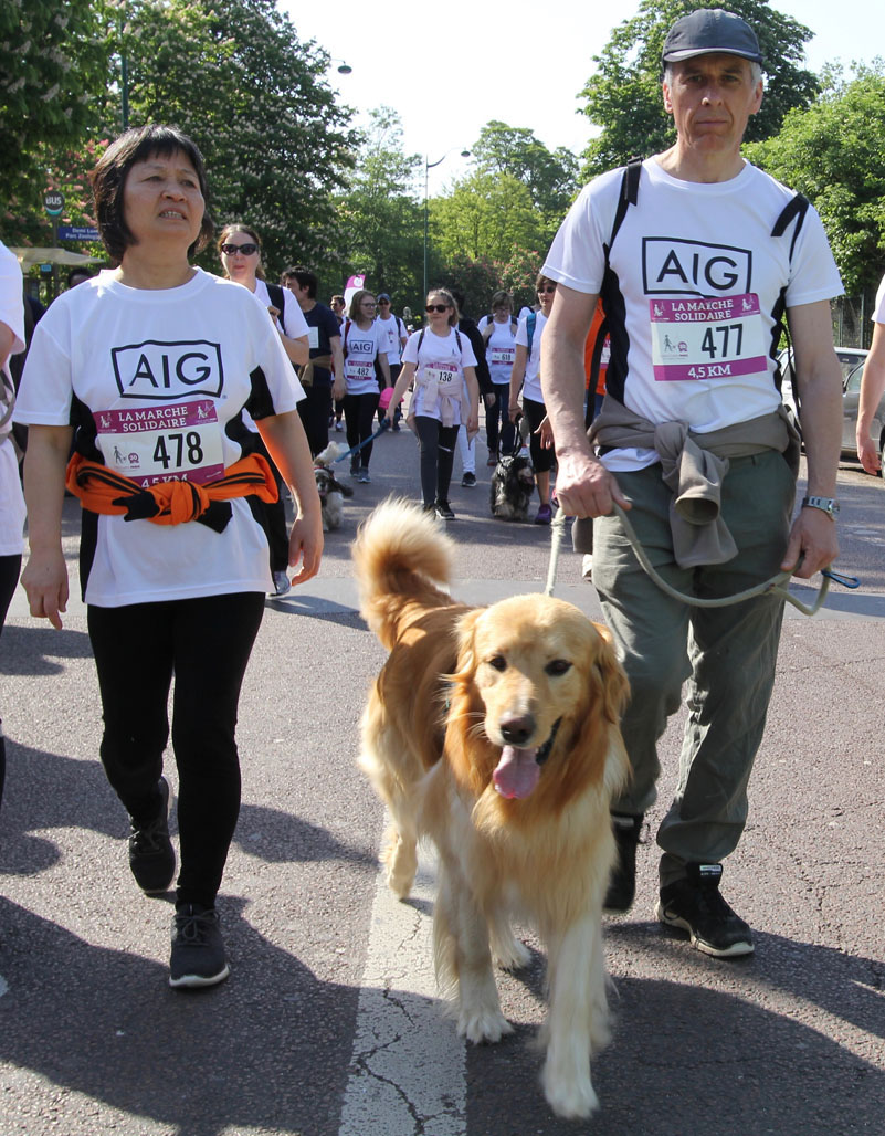 chiens-guides-30ans-marche-069.jpg