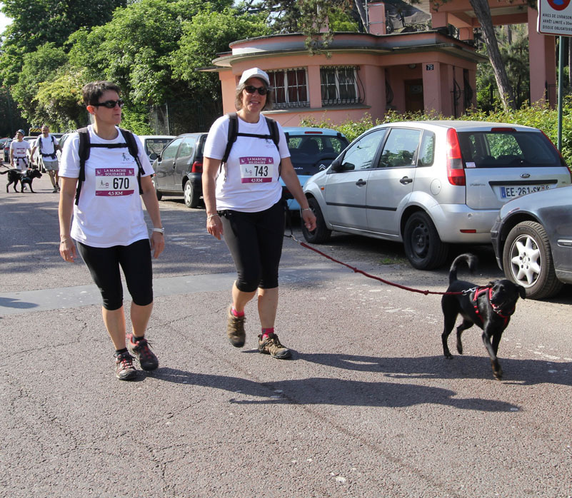 chiens-guides-30ans-marche-077.jpg