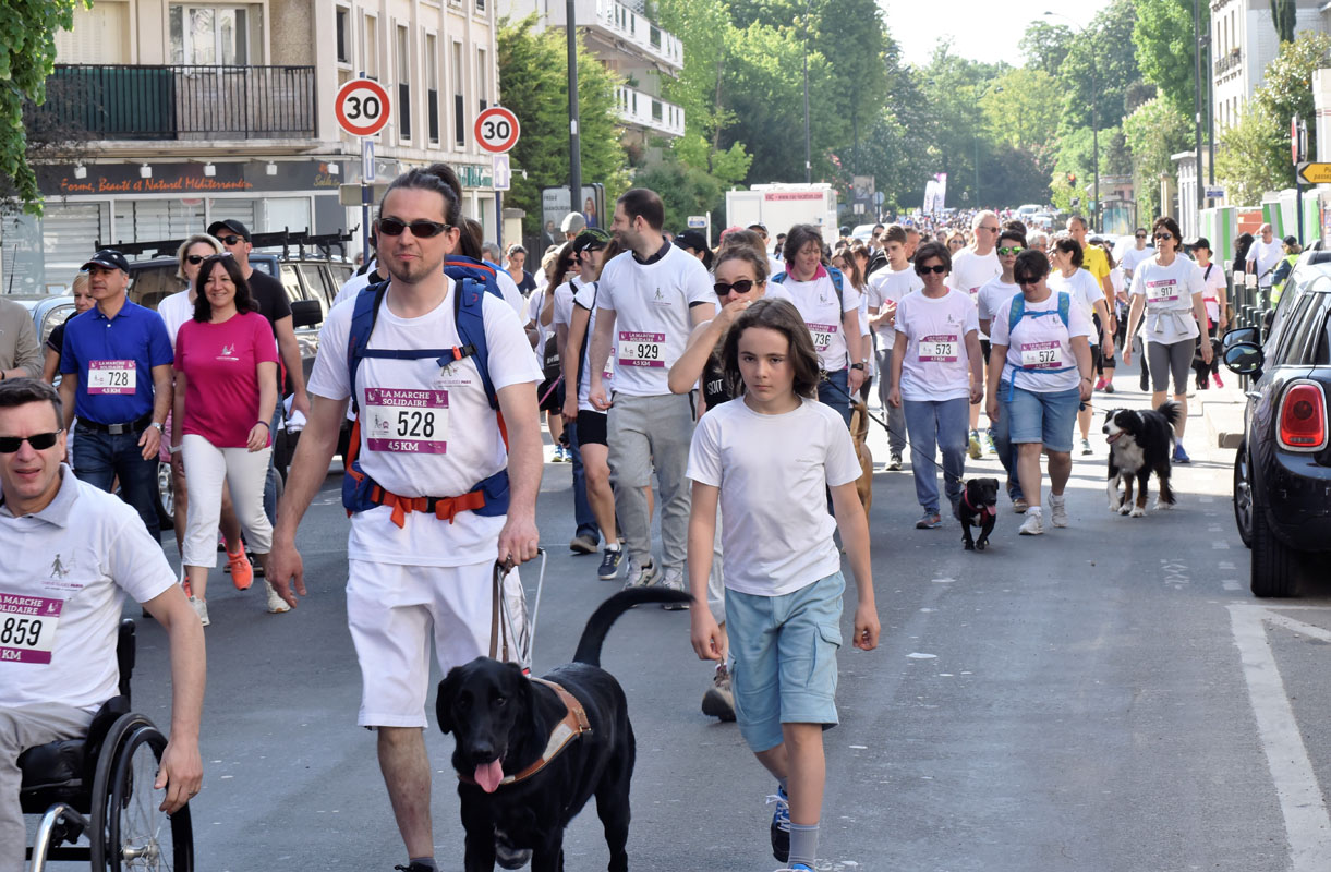 chiens-guides-30ans-marche-091.JPG