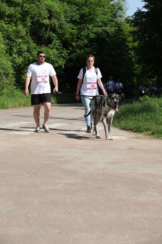 chiens-guides-30ans-marche-114.jpg