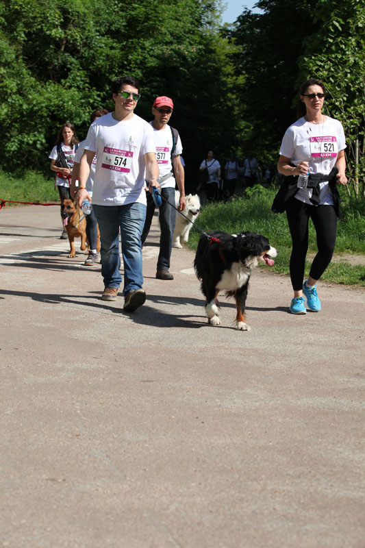 chiens-guides-30ans-marche-115.jpg