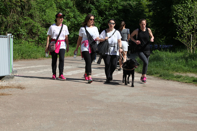 chiens-guides-30ans-marche-117.jpg