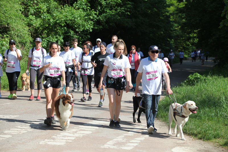 chiens-guides-30ans-marche-124.jpg