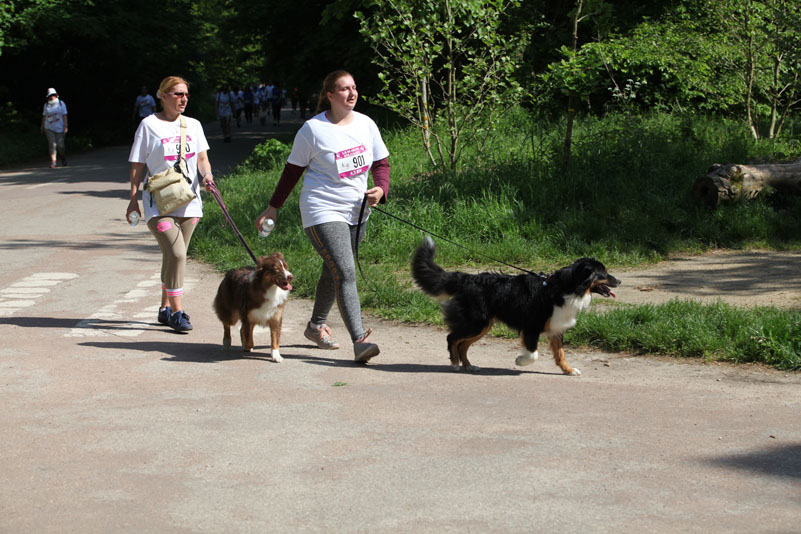 chiens-guides-30ans-marche-128.jpg