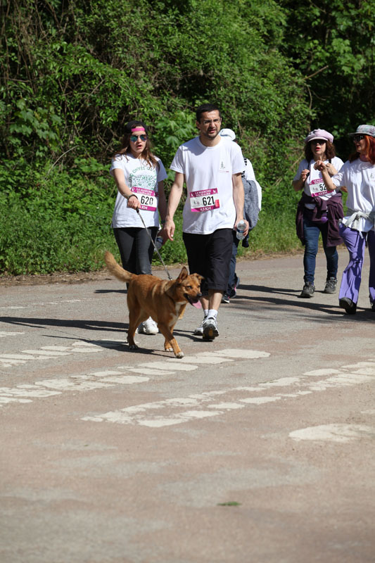 chiens-guides-30ans-marche-146.jpg
