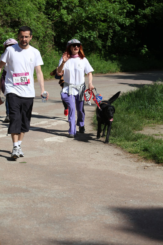 chiens-guides-30ans-marche-148.jpg