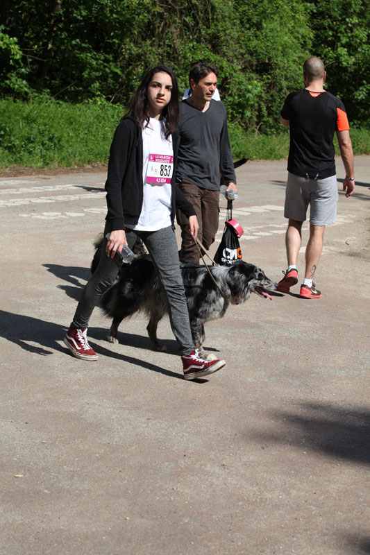 chiens-guides-30ans-marche-151.jpg