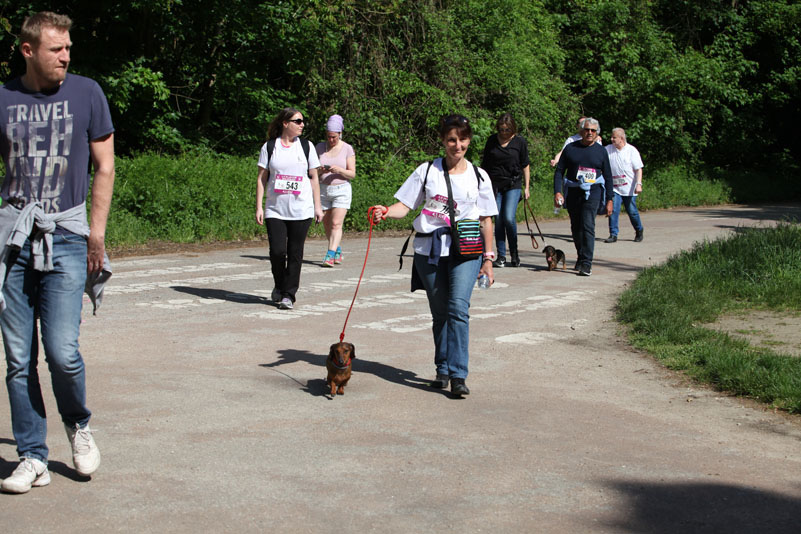 chiens-guides-30ans-marche-157.jpg