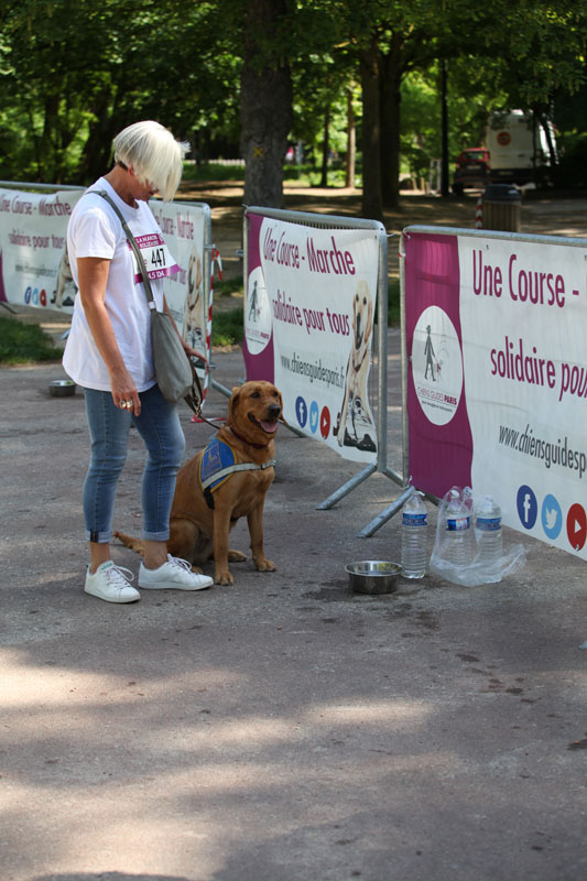 chiens-guides-30ans-marche-162.jpg