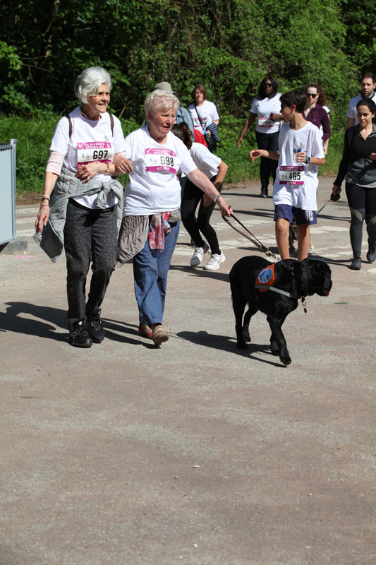 chiens-guides-30ans-marche-163.jpg