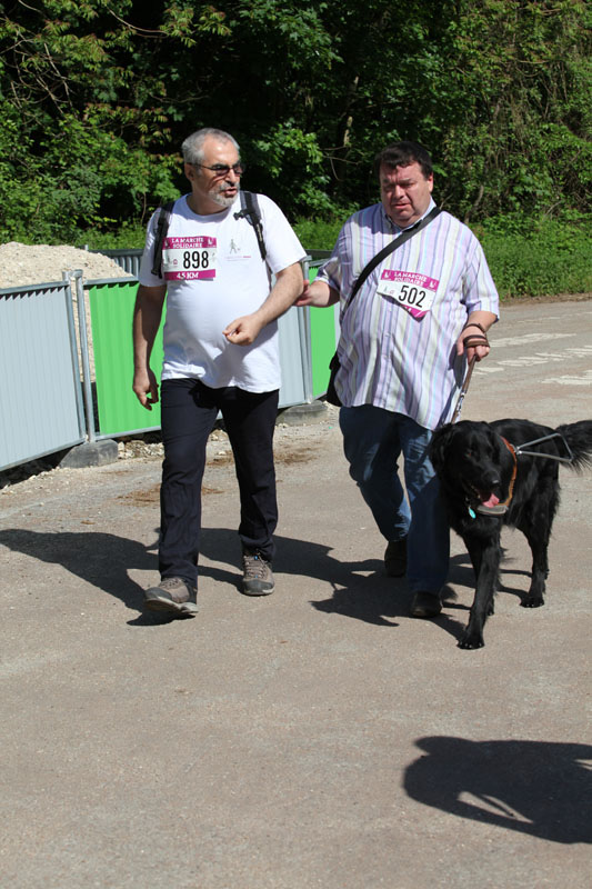 chiens-guides-30ans-marche-175.jpg