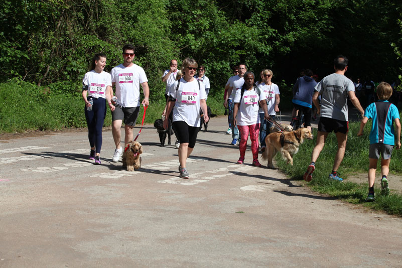 chiens-guides-30ans-marche-176.jpg