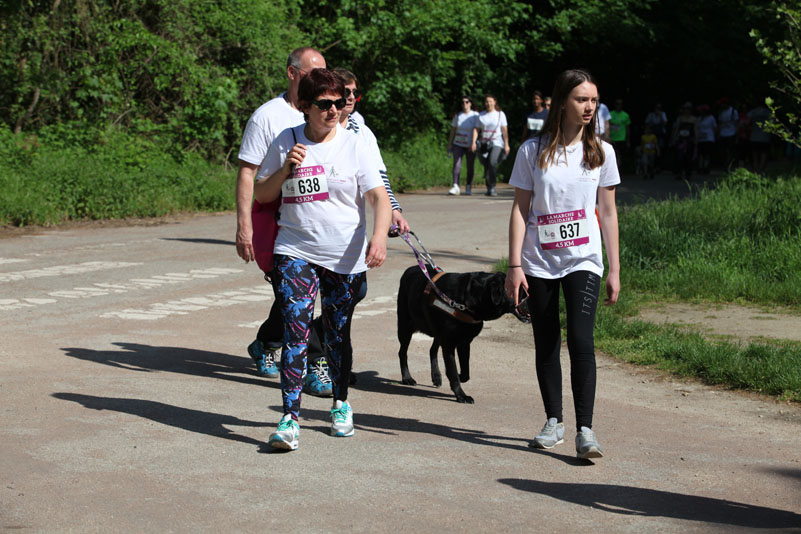 chiens-guides-30ans-marche-179.jpg