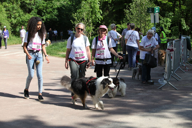 chiens-guides-30ans-marche-199.jpg
