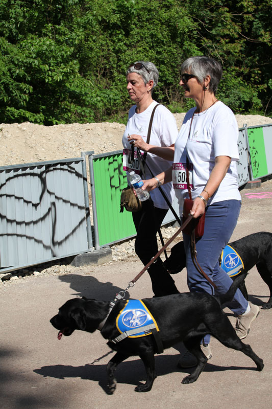 chiens-guides-30ans-marche-202.jpg