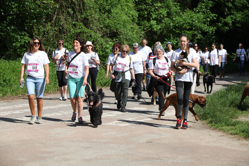 chiens-guides-30ans-marche-204.jpg