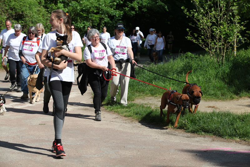 chiens-guides-30ans-marche-205.jpg