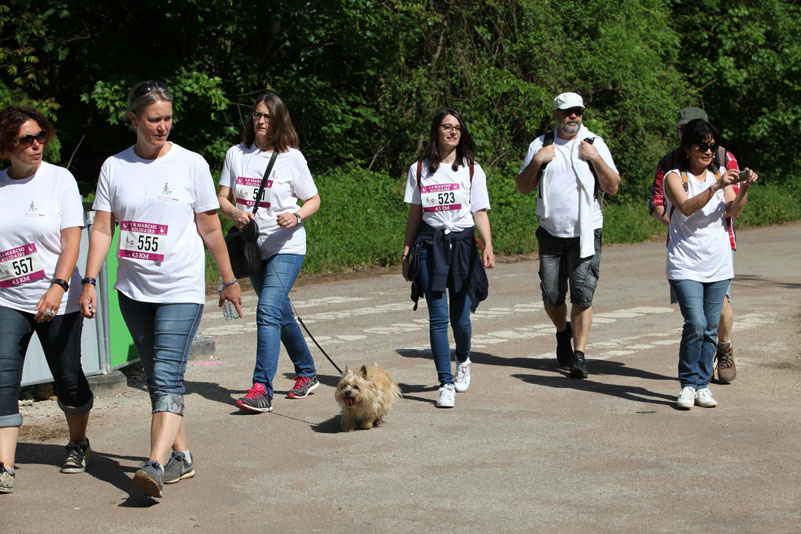 chiens-guides-30ans-marche-208.jpg