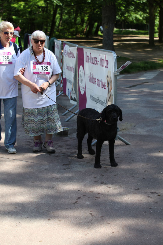 chiens-guides-30ans-marche-211.jpg