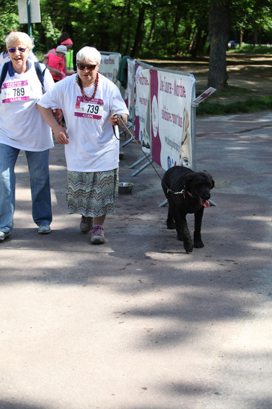 chiens-guides-30ans-marche-212.jpg