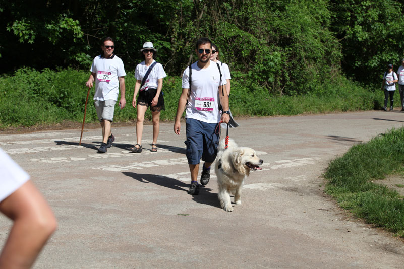 chiens-guides-30ans-marche-224.jpg