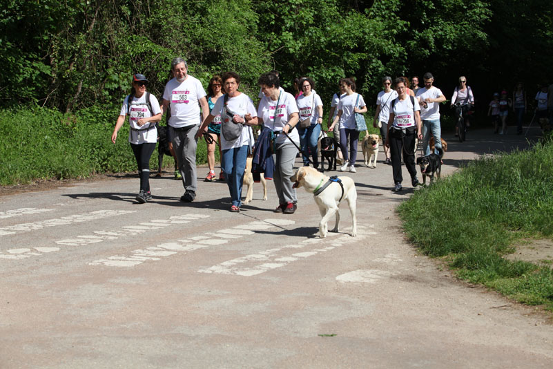 chiens-guides-30ans-marche-225.jpg