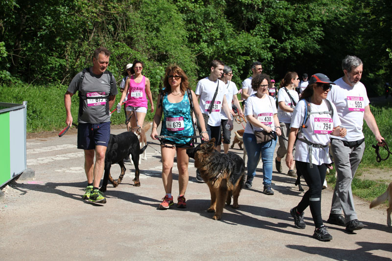 chiens-guides-30ans-marche-226.jpg