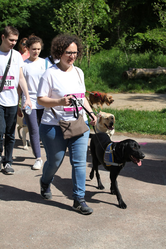 chiens-guides-30ans-marche-227.jpg