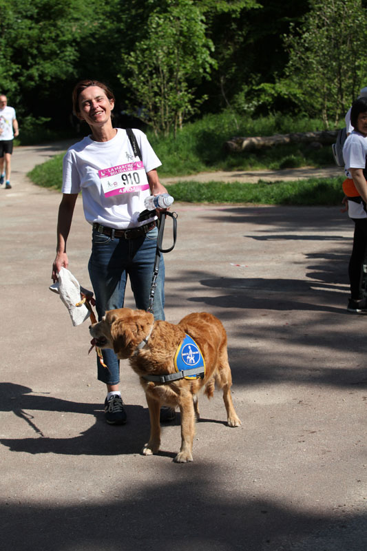 chiens-guides-30ans-marche-238.jpg