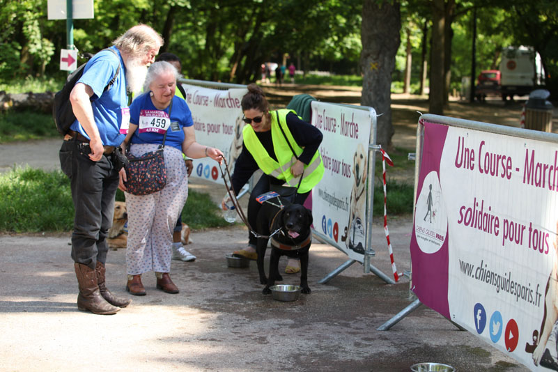 chiens-guides-30ans-marche-247.jpg
