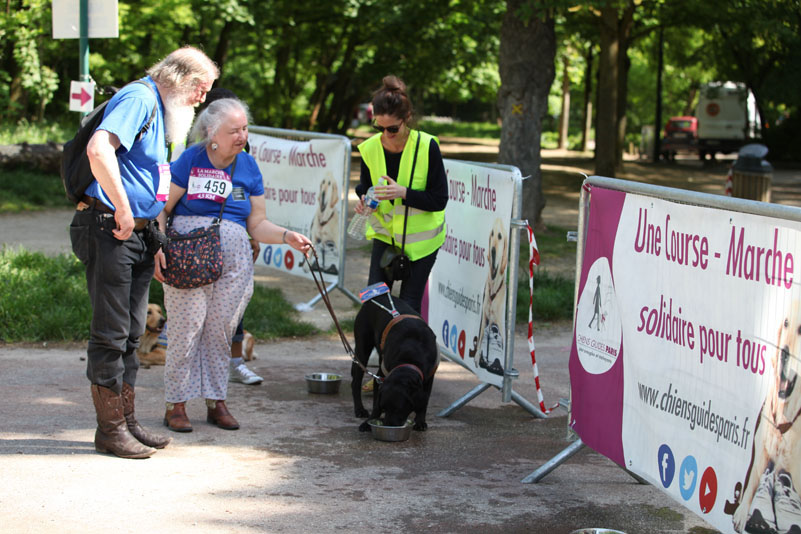 chiens-guides-30ans-marche-248.jpg