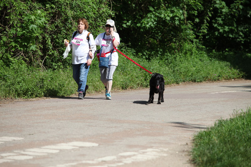 chiens-guides-30ans-marche-250.jpg