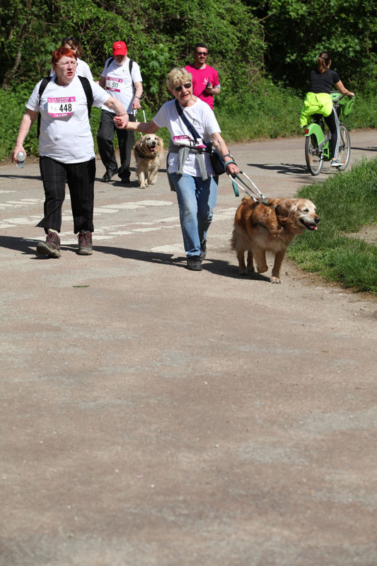 chiens-guides-30ans-marche-253.jpg