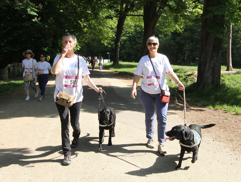 chiens-guides-30ans-marche-278.jpg