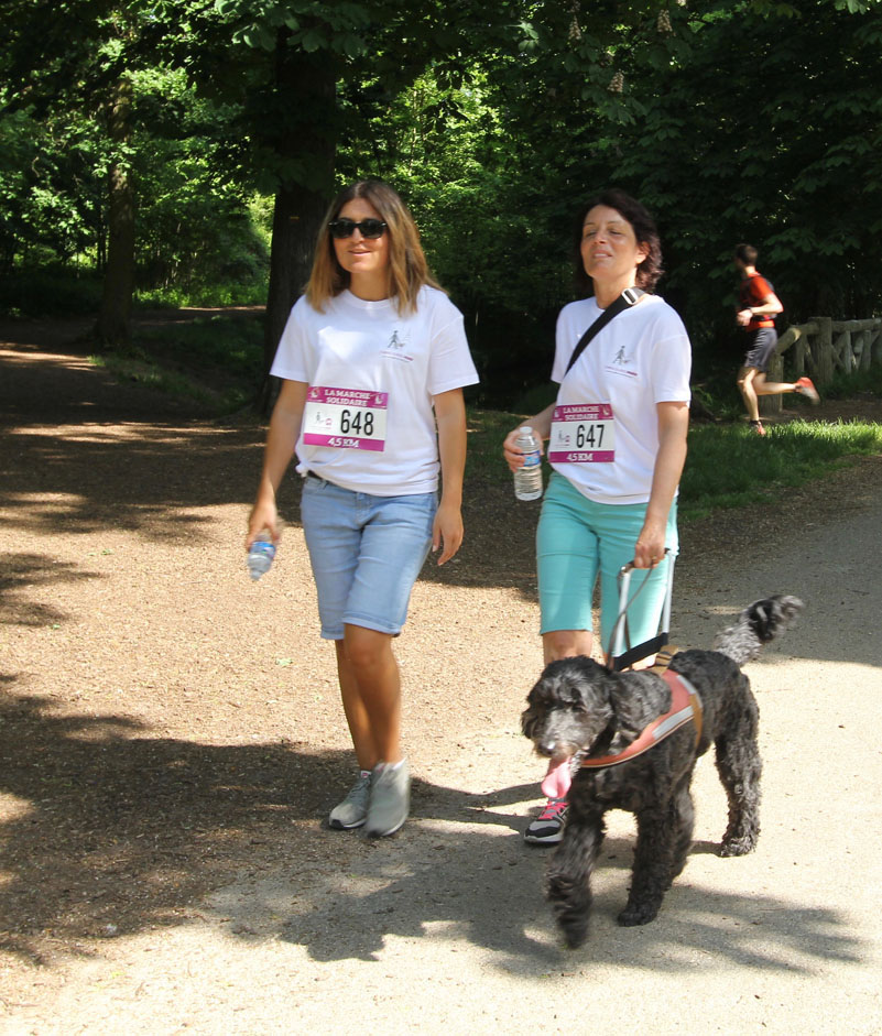 chiens-guides-30ans-marche-296.jpg
