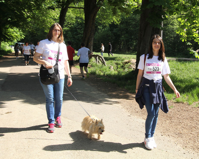 chiens-guides-30ans-marche-297.jpg