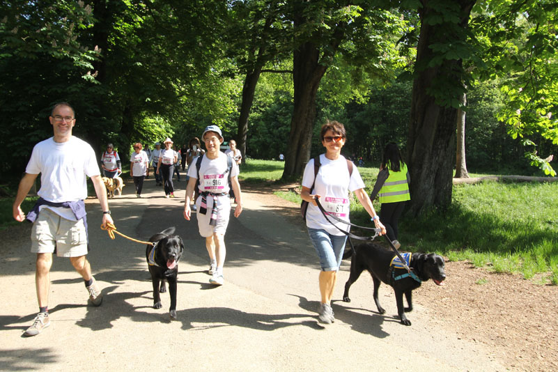 chiens-guides-30ans-marche-299.jpg
