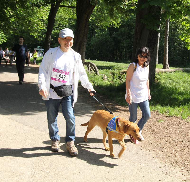 chiens-guides-30ans-marche-301.jpg
