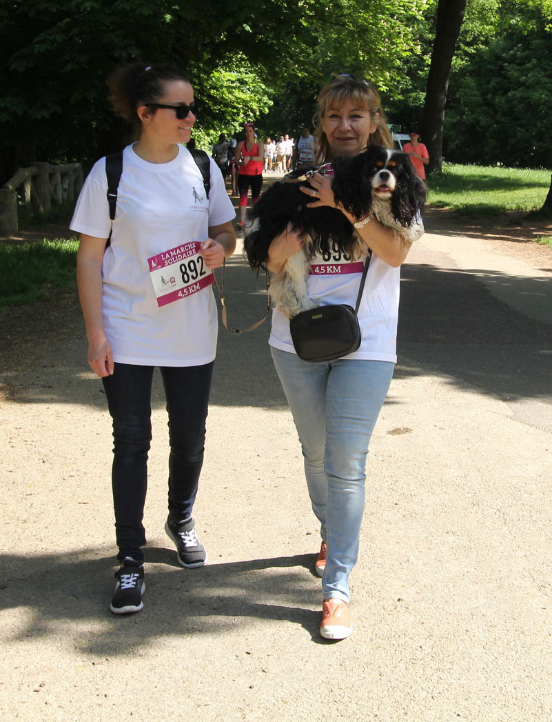 chiens-guides-30ans-marche-318.jpg